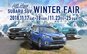 SUBARU SUV WINTER FAIR