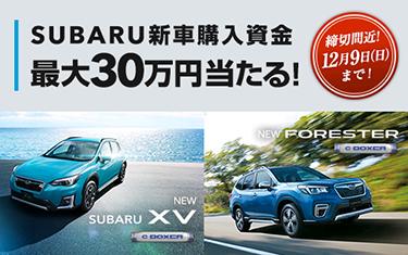 最大30万円新車購入資金プレゼント