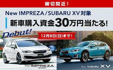 締切間近!新車購入資金30万円当たる!