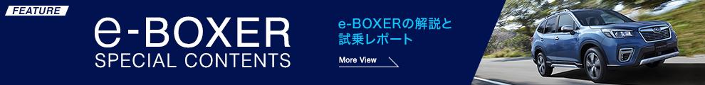 e-BOXERの解説と試乗レポート